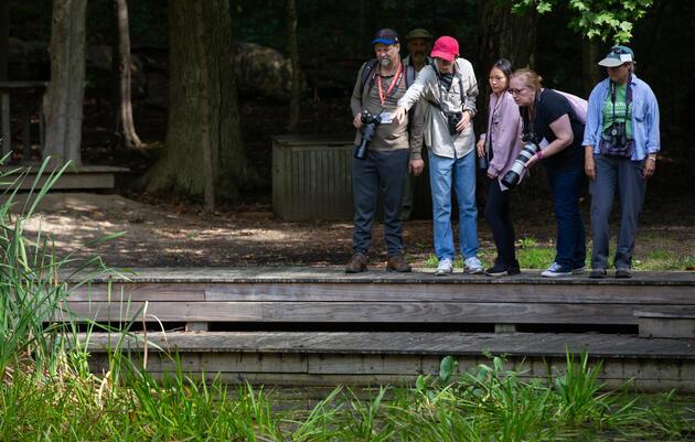 Audubon Private Adventures