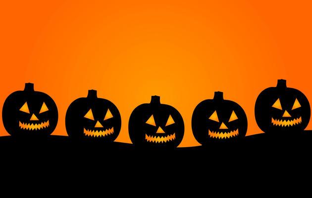 Halloween Weekend at Greenwich Audubon Center