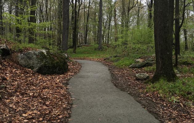 Grand Opening of Accessible Nature Trail and Pond