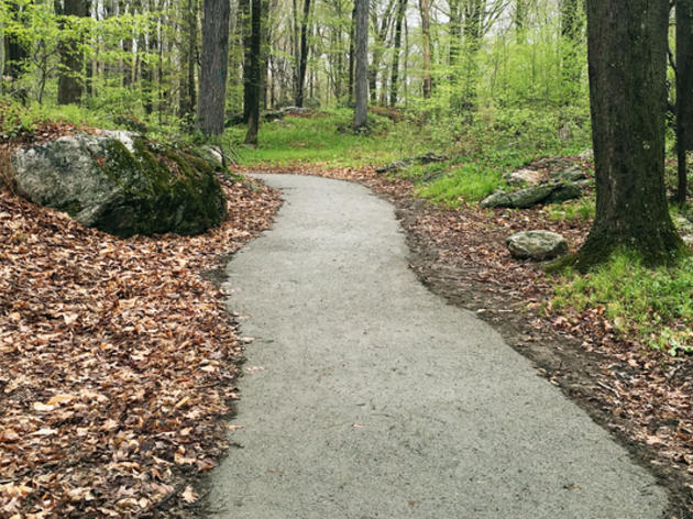 Accessibility at Audubon Center in Greenwich